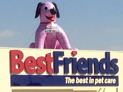 Rooftop Inflatable Doggy Promotion new store
